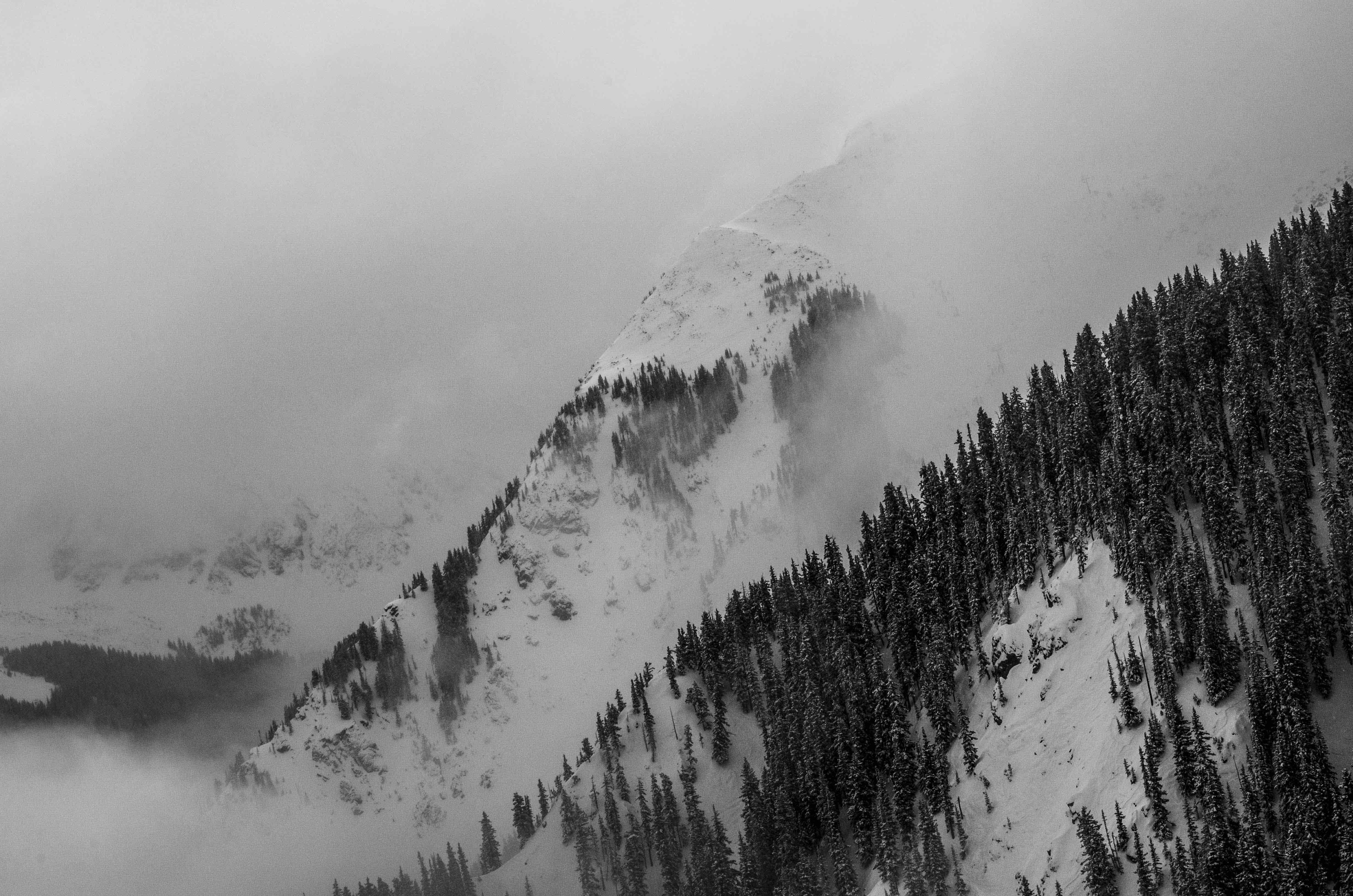 North Face & the Dog Paws - Kachina Peak Shrouded in Clouds, Taos Ski Valley, NM