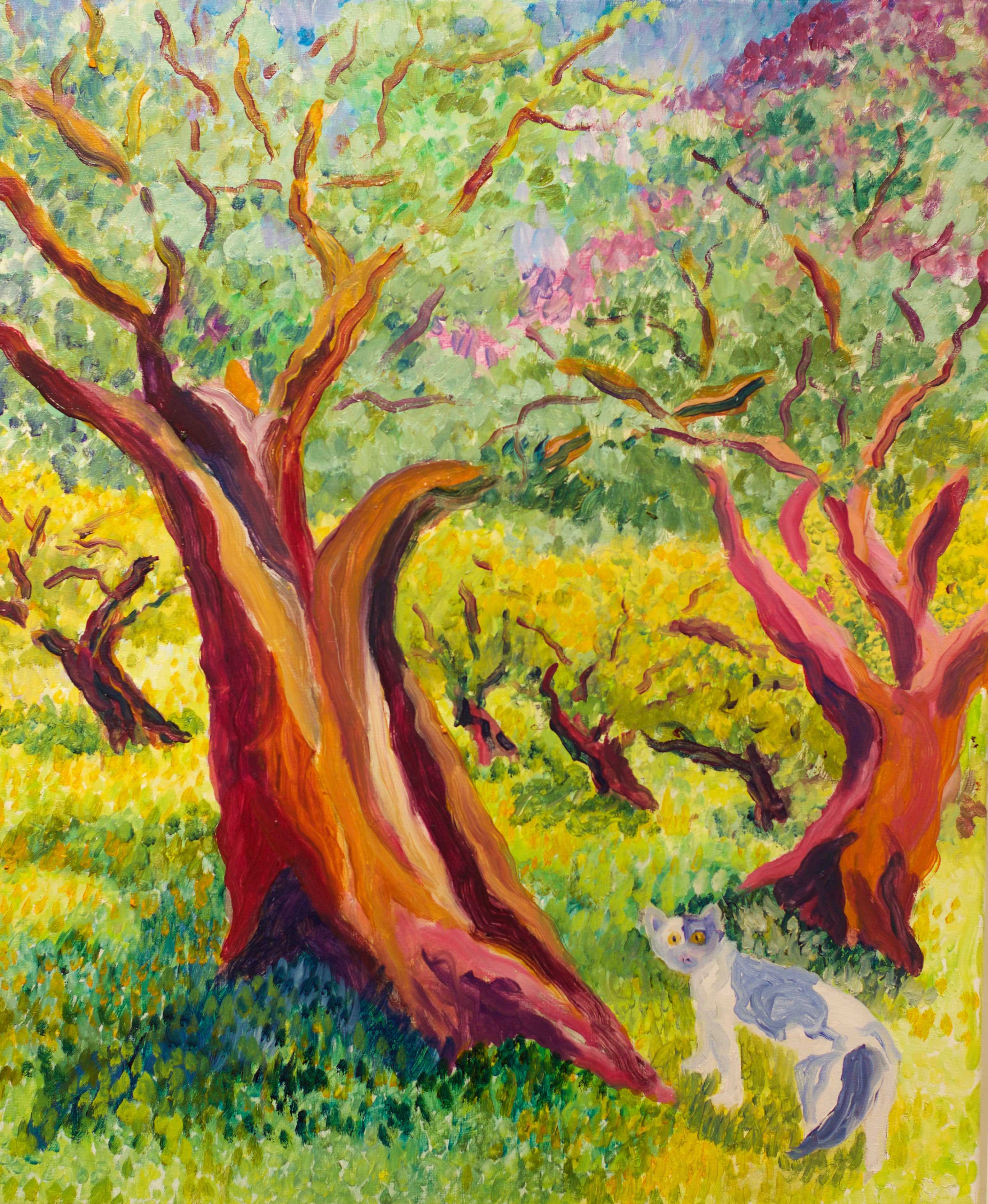 Lor Kasper Artist Olive Grove Provence France Taos New Mexico